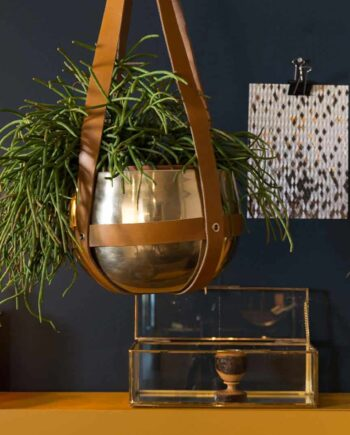 Oasis plantenhanger Dutchbone